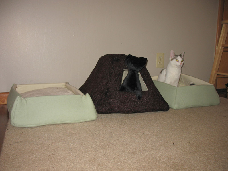 More Cat Beds