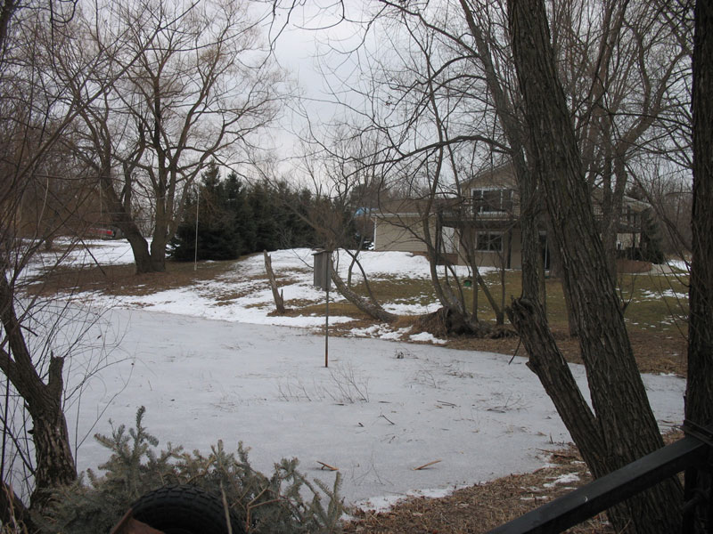 In the back of the yard, view of the pond